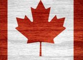 The Summit Wood Heater - Made in Canada