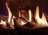 Esprit Gas Log Fire - Flames